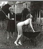 garden caned
