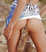 lady foxy